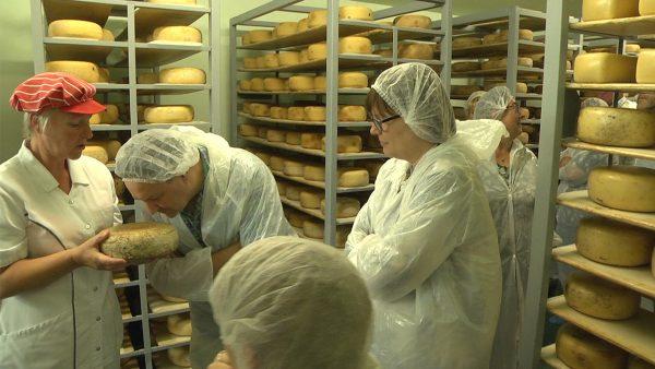 Käse in seiner ganzen Parcht. Die Bauernkäserei Wolters